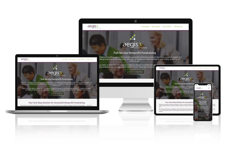 Aegis3 Fundraising website design